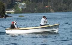 Boat - savage dolphin